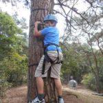 bomen klimmen bushcraft zomerkamp