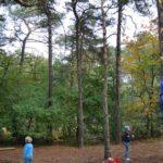 Boomklimmen bushcraftkamp