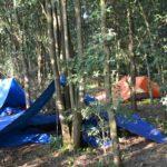 tarp tentenkamp tijdens bushcraft zomerkamp