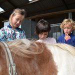Op de boerderij kinderkamp
