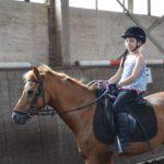 draf ponykamp