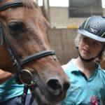binnenbak ponykamp