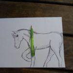 tekening ponykamp